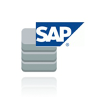 audit-SAP